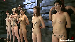 Tied up bitches are tied up and punished by several kinky dudes