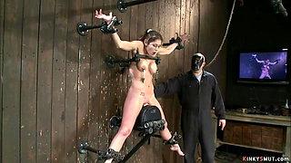 Busty slave on Sybian