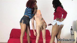 Kittens fuck fellas ass hole with enormous strap-ons and bur