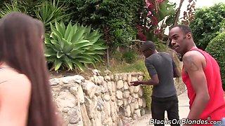 blacks - bella nikole